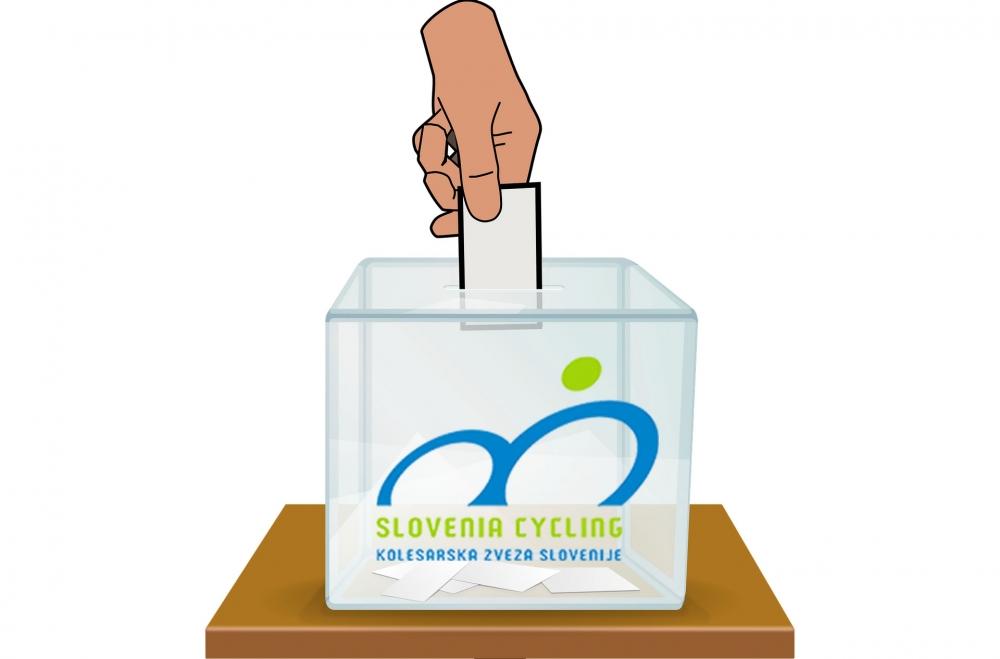volilna skupščina