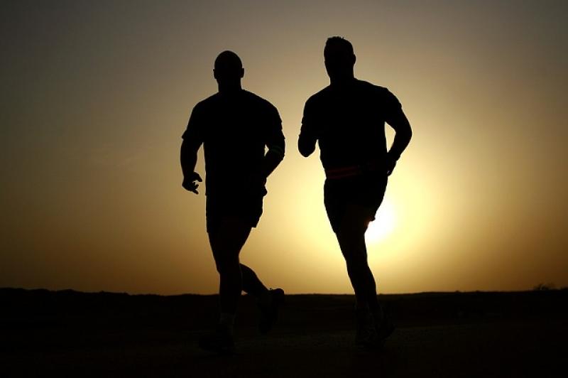Redna vadba