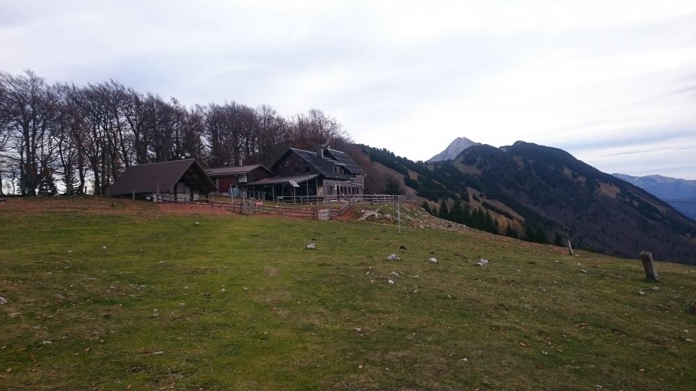 Dom na Kriški gori